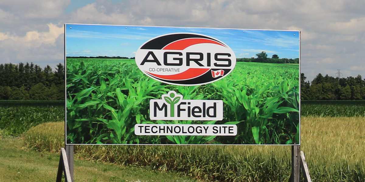 MiField-Technology-Site_3Col.jpg