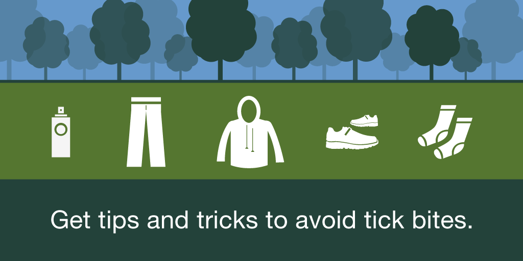 It's tick season. How to protect yourself from Lyme disease.